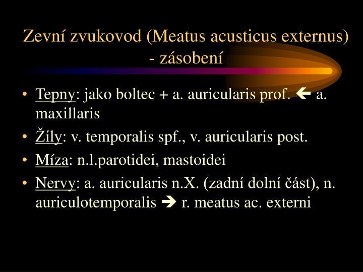 Zevní zvukovod (Meatus acusticus externus) - zásobení