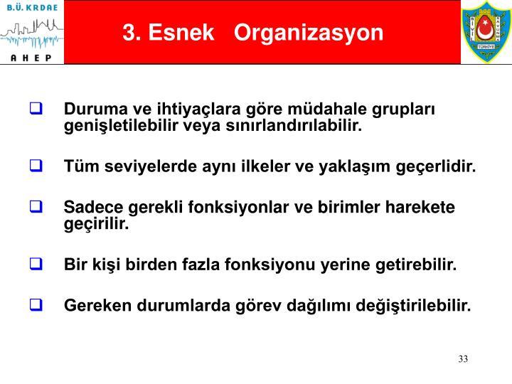 3. Esnek   Organizasyon