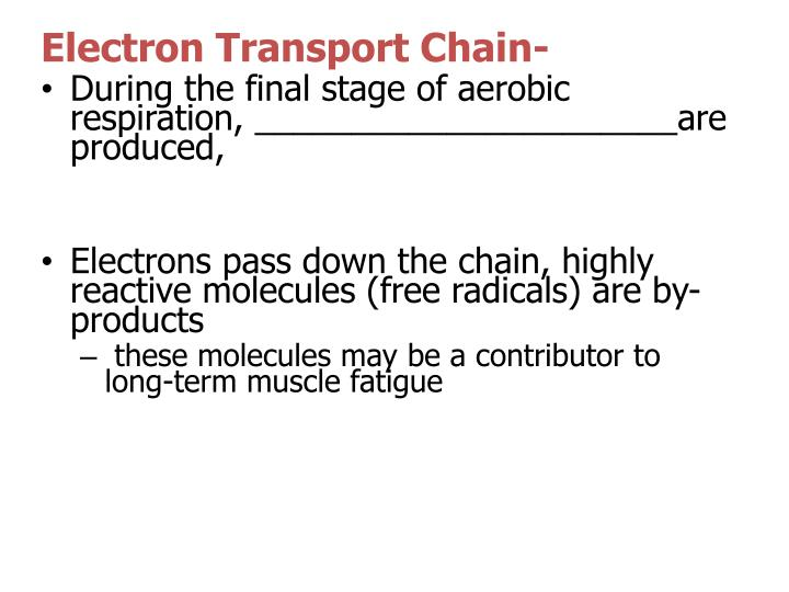 Electron Transport Chain-