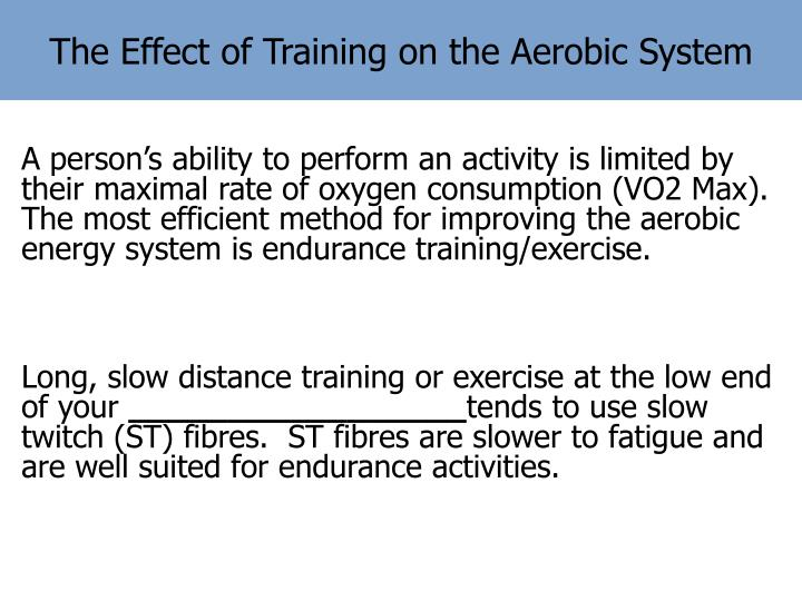 The Effect of Training on the Aerobic System