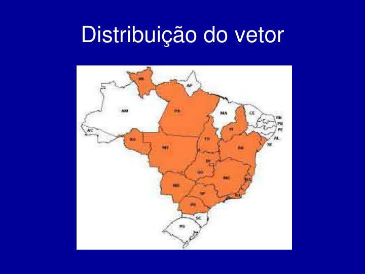 Distribuição do vetor