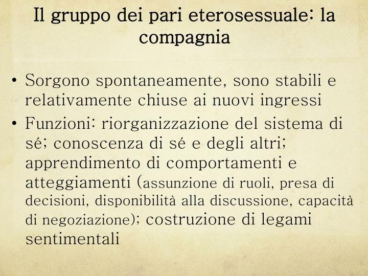 Il gruppo dei pari eterosessuale: la compagnia