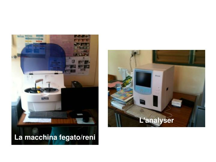 La macchina fegato/reni