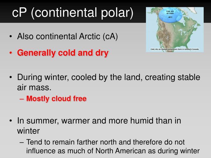 cP (continental polar)