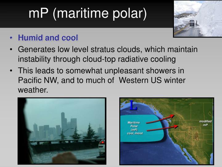 mP (maritime polar)