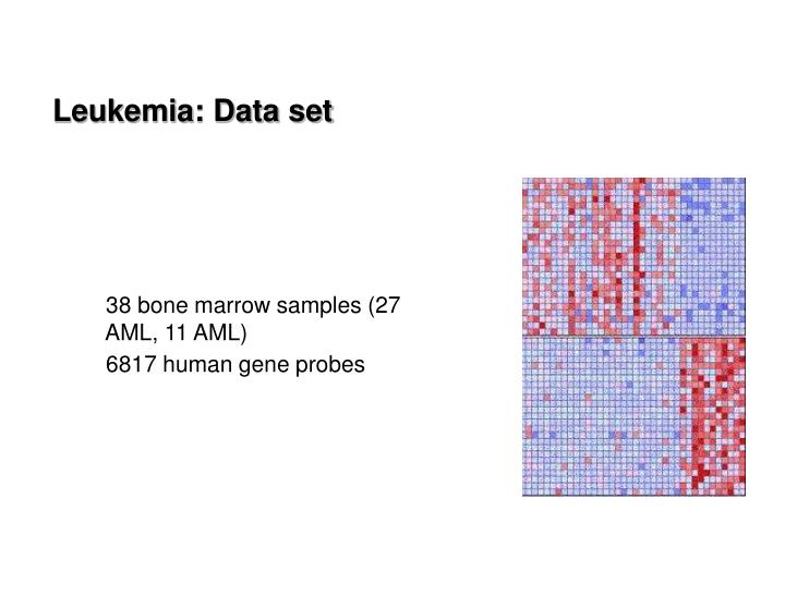 Leukemia: Data set