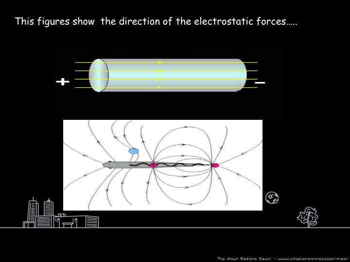 This figures show  the direction of the electrostatic forces…..
