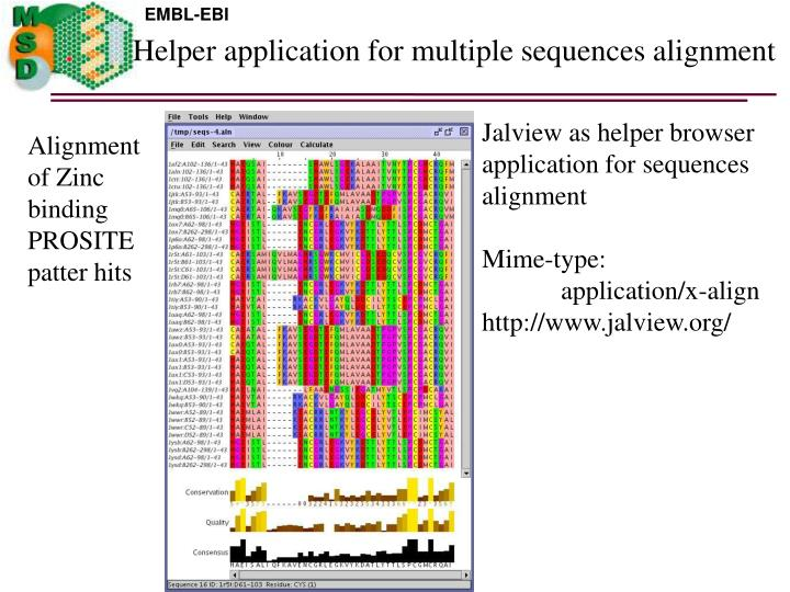 Helper application for multiple sequences alignment