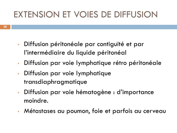 EXTENSION ET VOIES DE DIFFUSION