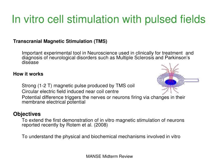 In vitro cell stimulation with pulsed fields