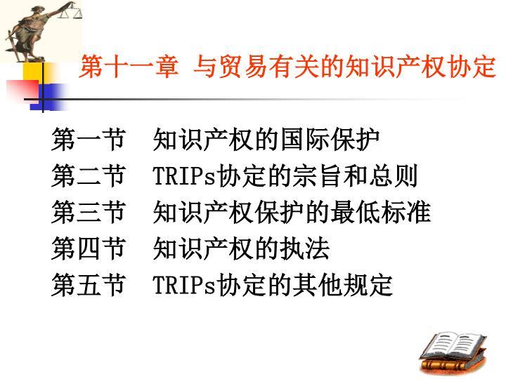 第十一章 与贸易有关的知识产权协定