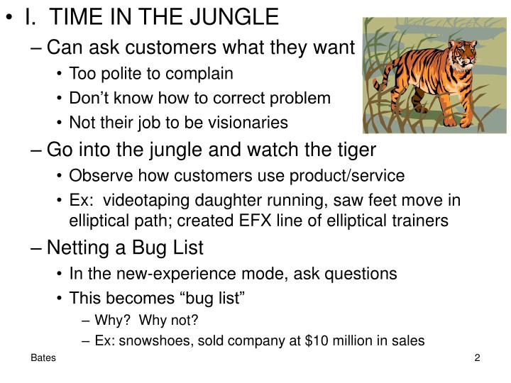 I.  TIME IN THE JUNGLE
