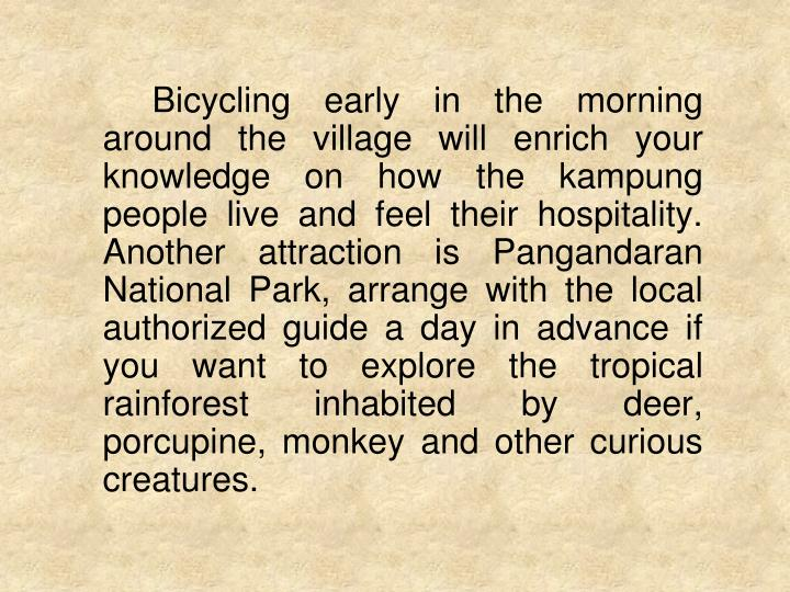 Bicycling early in the morning around the village will enrich your knowledge on how the kampung people live and feel their hospitality. Another attraction is Pangandaran National Park, arrange with the local authorized guide a day in advance if you want to explore the tropical rainforest inhabited by deer, porcupine, monkey and other curious creatures.