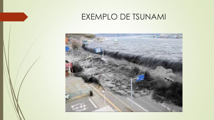EXEMPLO DE TSUNAMI