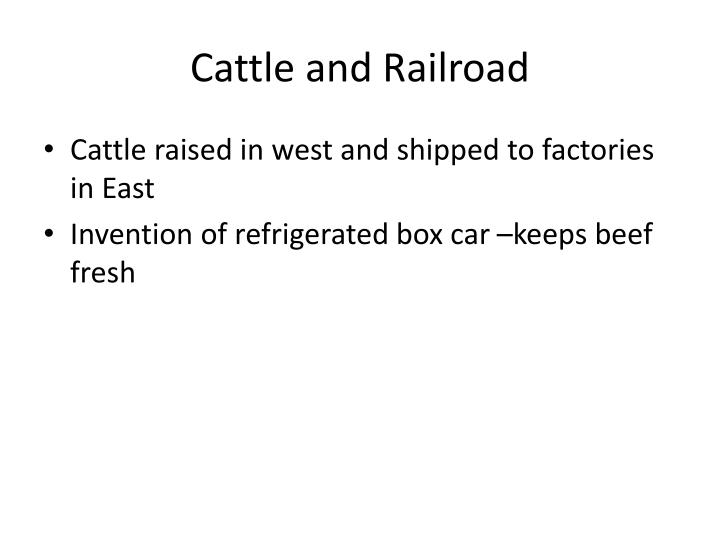 Cattle and Railroad