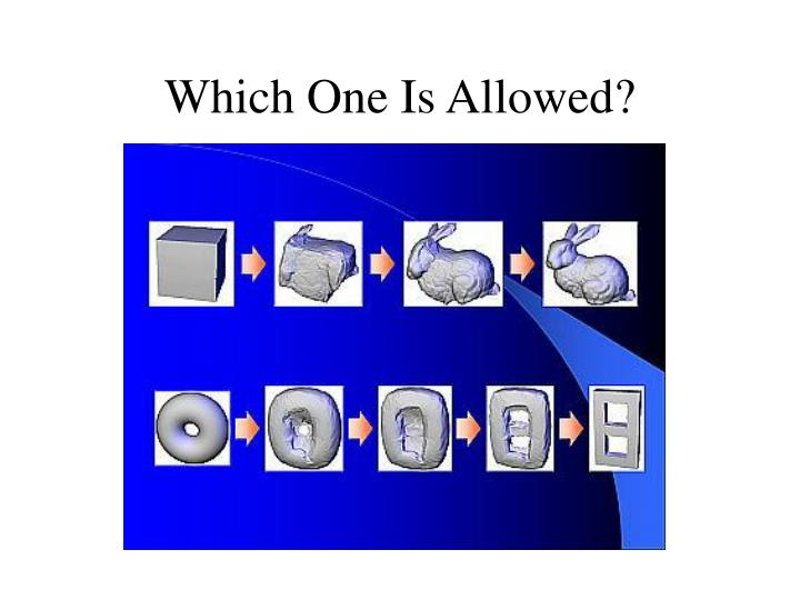 Which One Is Allowed?