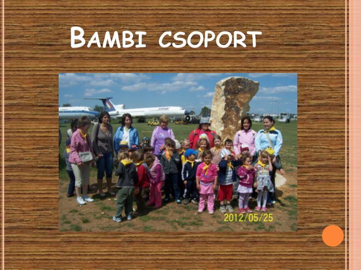 Bambi csoport