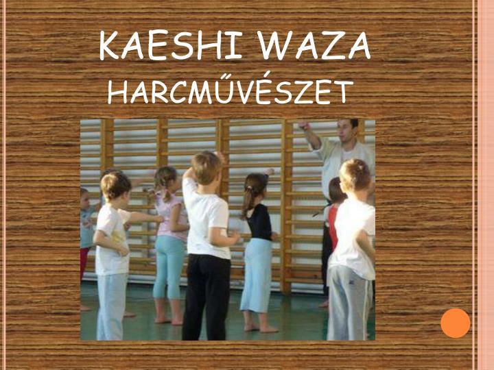 KAESHI WAZA harcművészet
