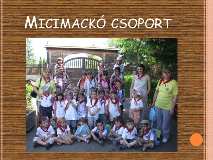 Micimackó csoport