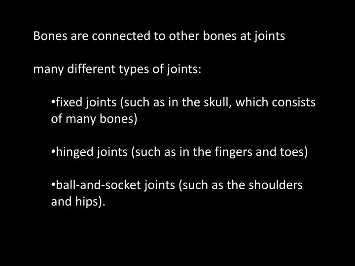 Bones are connected to other bones at joints