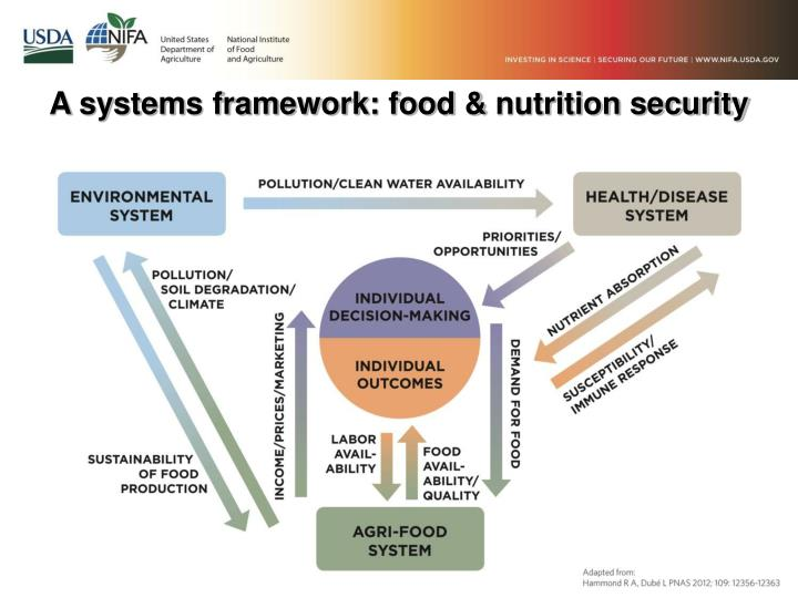 A systems framework: food &