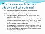 why do some people become addicted and others do not