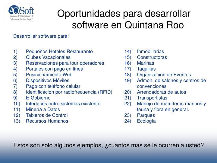 Oportunidades para desarrollar software en Quintana Roo
