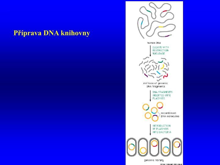 Příprava DNA knihovny