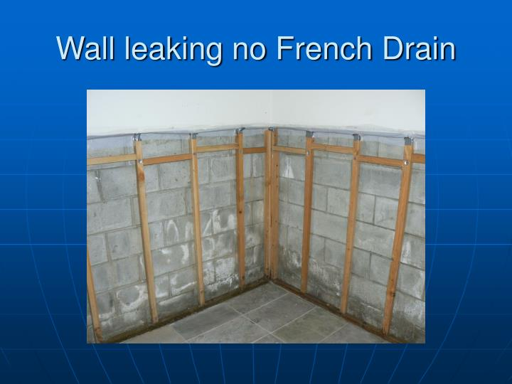 Wall leaking no French Drain