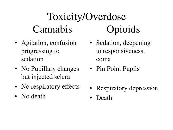 Toxicity overdose cannabis opioids