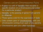 genes are on chromosome pairs