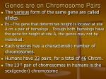 genes are on chromosome pairs1