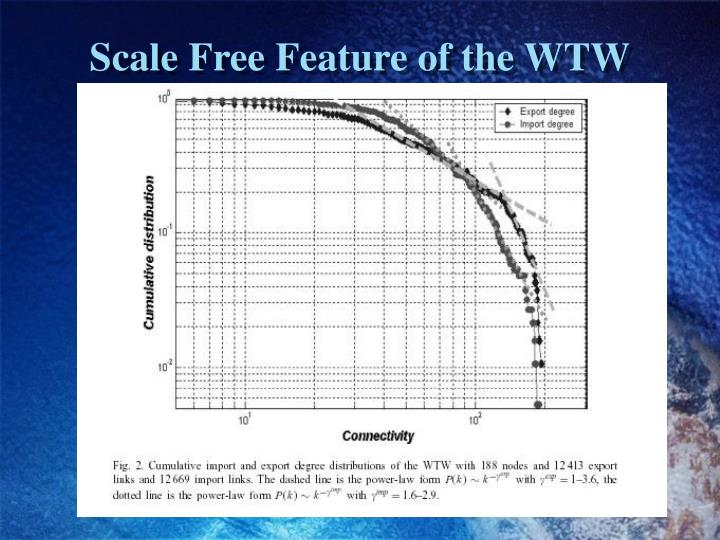 Scale Free Feature of the WTW