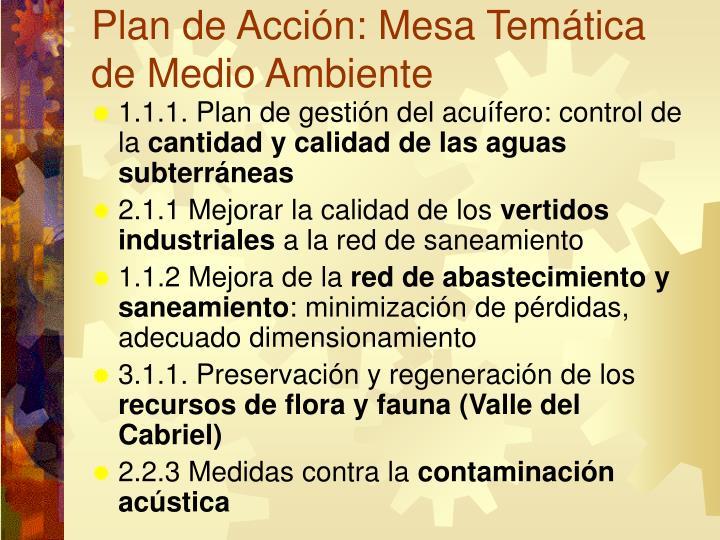 Plan de Acción: Mesa Temática de Medio Ambiente