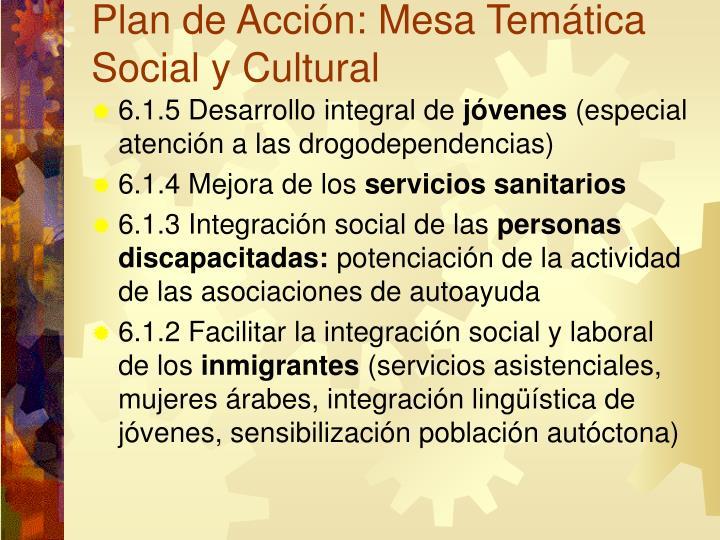 Plan de Acción: Mesa Temática Social y Cultural