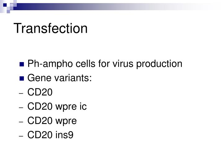 Transfection