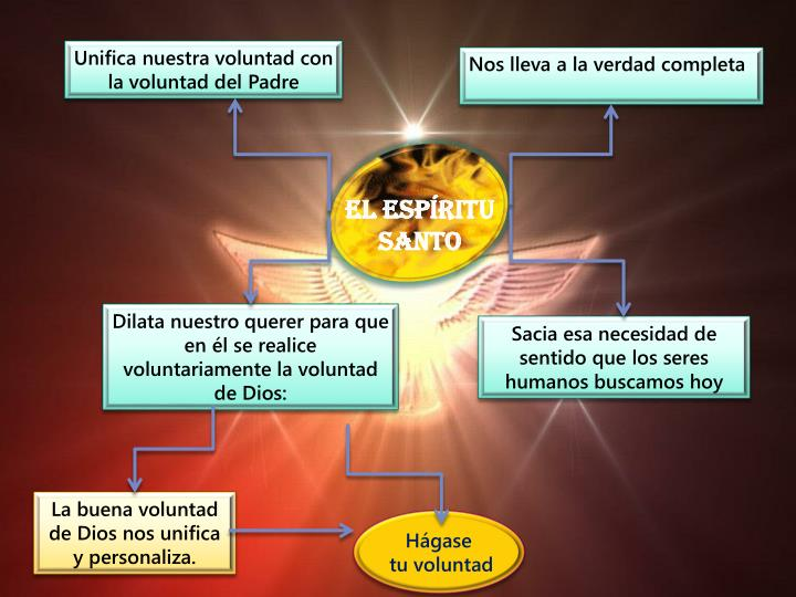 Unifica nuestra voluntad con la voluntad del Padre