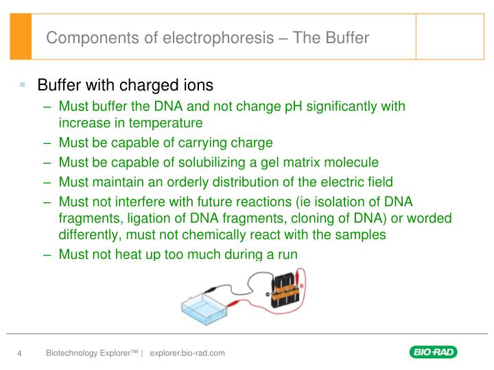 Components of electrophoresis – The Buffer