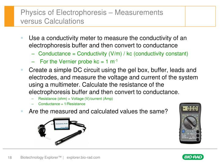 Physics of Electrophoresis – Measurements versus Calculations