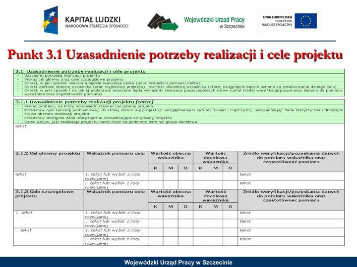 Punkt 3.1 Uzasadnienie potrzeby realizacji i cele projektu