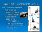 glur1 gfp insertion into spines1