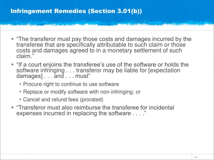 Infringement Remedies (Section 3.01(b))