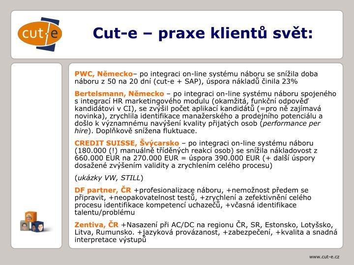 Cut-e – praxe klientů svět: