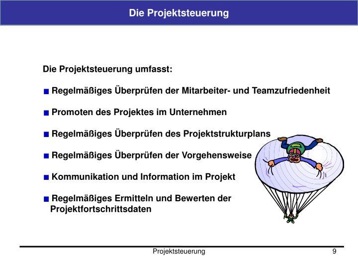 Die Projektsteuerung