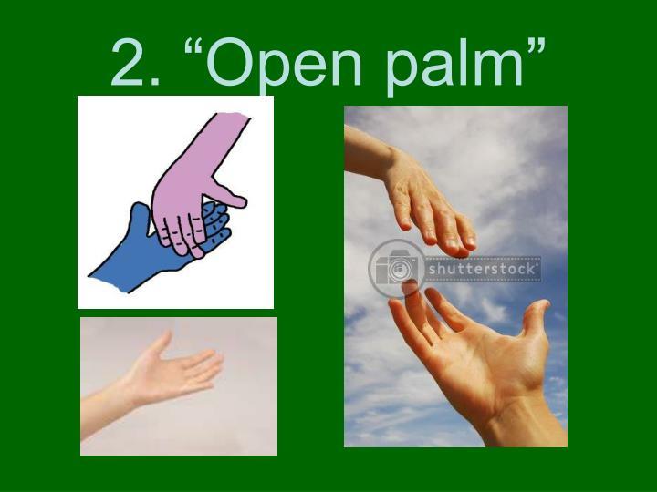 "2. ""Open palm"""