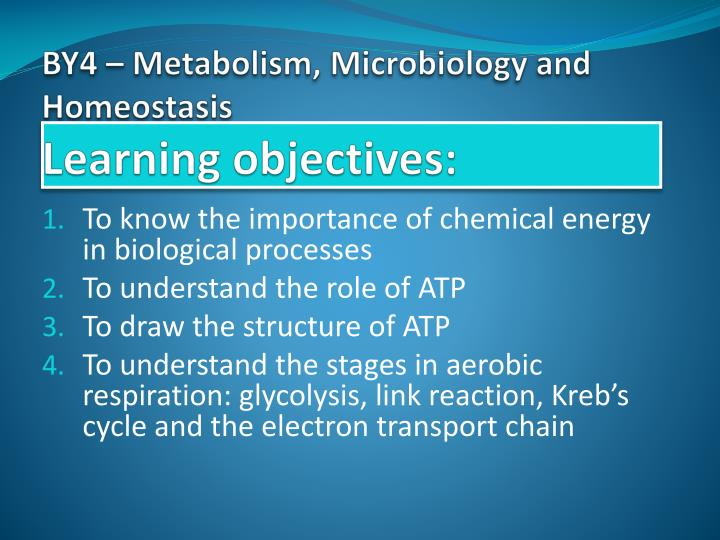 ap biology: cells have kinetic energy essay Ap biology: cells have kinetic energy essay sample cells have kinetic energy this causes the molecules of the cell to travel about and knock into each other diffusion is one consequence of this molecular motion diffusion is the random motion of molecules from an country of higher concentration to countries of lower concentration.