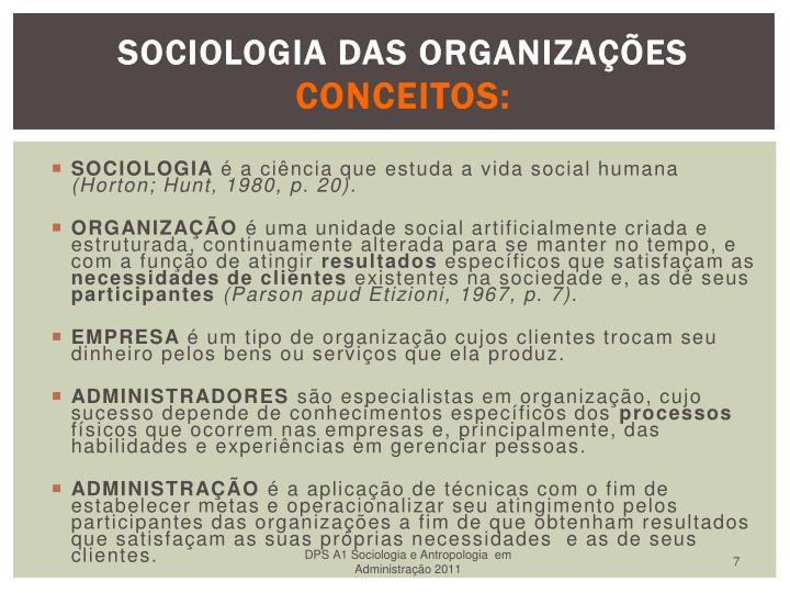 SOCIOLOGIA DAS ORGANIZAES