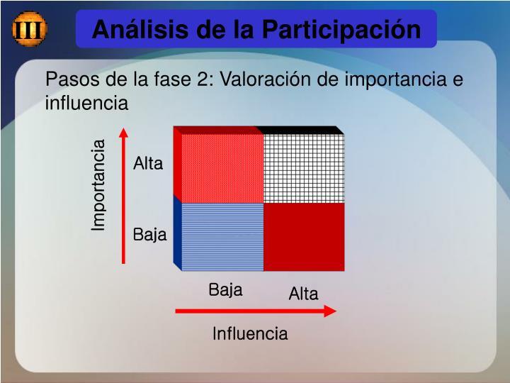 Análisis de la Participación