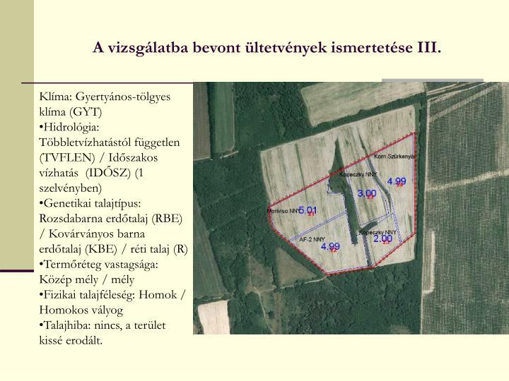 A vizsgálatba bevont ültetvények ismertetése III.