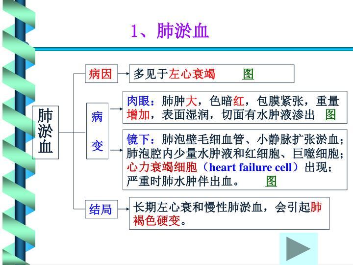 1、肺淤血